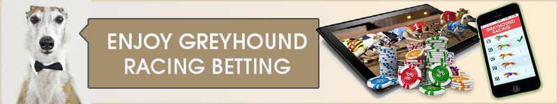 Check out the best greyhound betting sites.