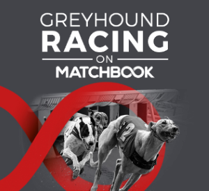 Make an account and place a bets on greyhound races.