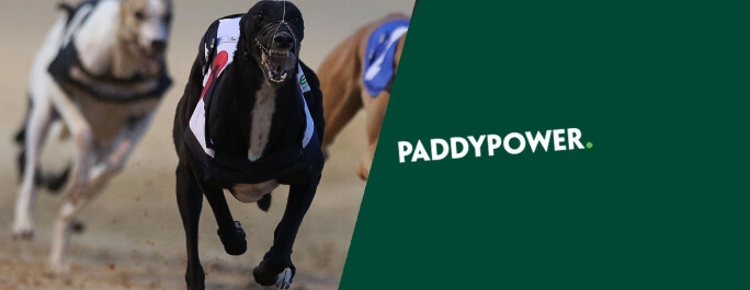 Paddy Power provide a top notch greyhound betting app.