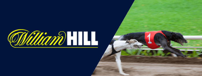 William Hill have a lot of experience when it comes to greyhound betting.